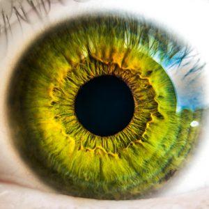 Choroby siatkówki oka