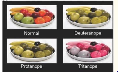 Daltonizm - jak widzi daltonista?
